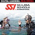 kostenloses SSI Online Training
