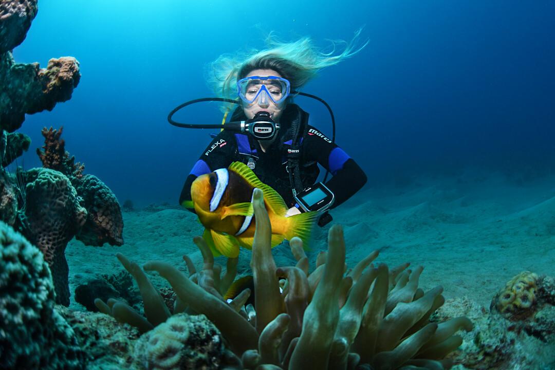 Taucherin hinter Fisch und Koralle